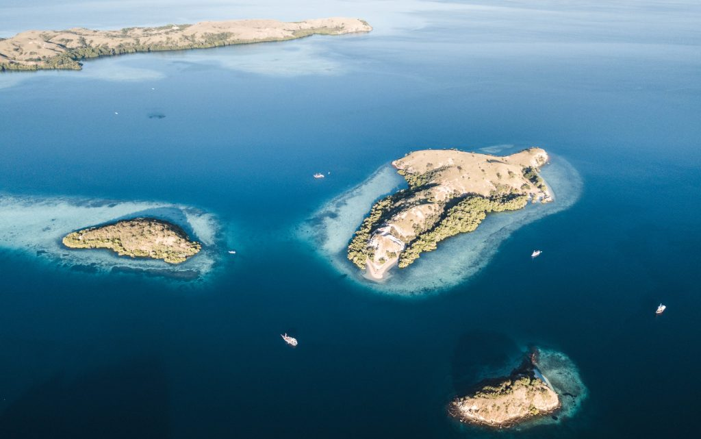 Komodo Tour Packages from Labuan Bajo